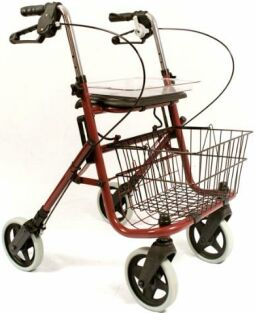 Nannie Deluxe Walker From Mobility Express